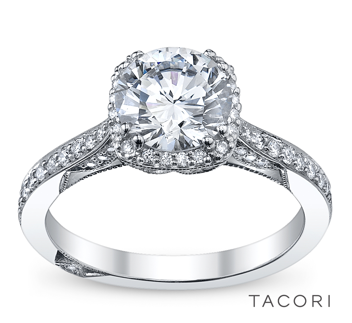 Tacori | Robbins Brothers Engagement Rings, Proposals ...